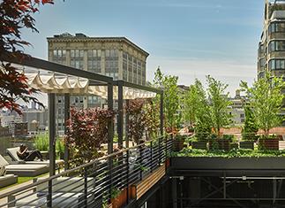 Park Avenue Rooftop Architecture Project