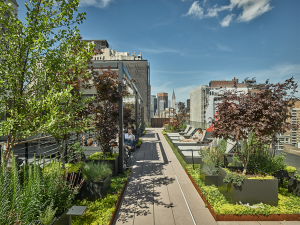 Park Avenue South Rooftop Renovation